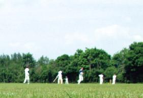 Cricket: AB De Villiers