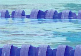 Swimming: Cameron van der Burgh